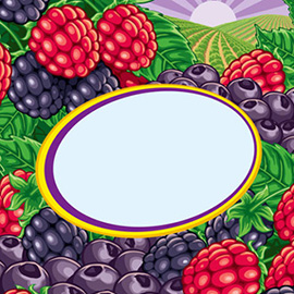 illustration of Berries image for fruit smoothie packaging