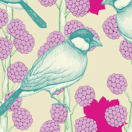 illustration of floral, flowers, spring, berries, berry, bird, spring, wildlife, garden, pattern, pen and ink, line drawing, digital, colorful, bright, gardening, botanical