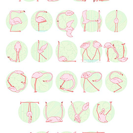 illustration of Flamingo Alphabet for Zoo exhibition at The Lauriston, London UK