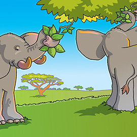 illustration of FREE WILD ELEPHANTS ENJOYING FEEDING ON TREE LEAVES IN A WILD GRASS LAND. CONTENT ELEPHANTS ON A WARM SUNNY DAY.