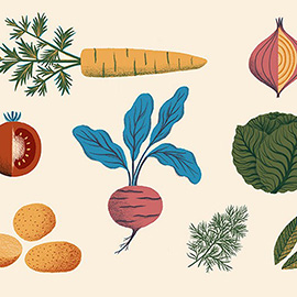 illustration of Detail Colourful Bold Strong Statement Ingredients Russian Beetroot Soup Potato Tomato Carrot Beetroot Onion Lettuce Dill Bay Leaves Vegetable Cooking Cook Instruction