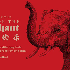 illustration of Handmade pen illustration converted into a digital advertisement for WildAid to create awareness to save elephants from extinction.